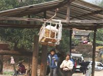 Photo: Hira and the ropeway operator steady cage of produce at the bottom station.